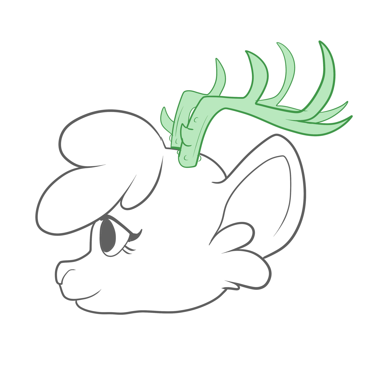 Horns, Antlers