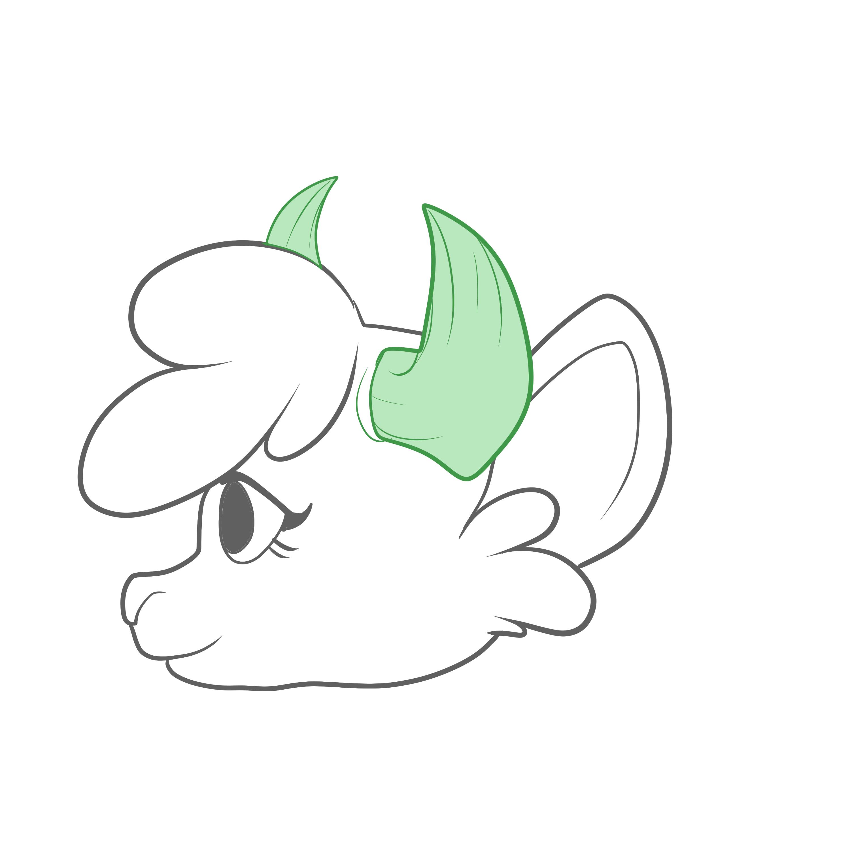 Horns, Bovine