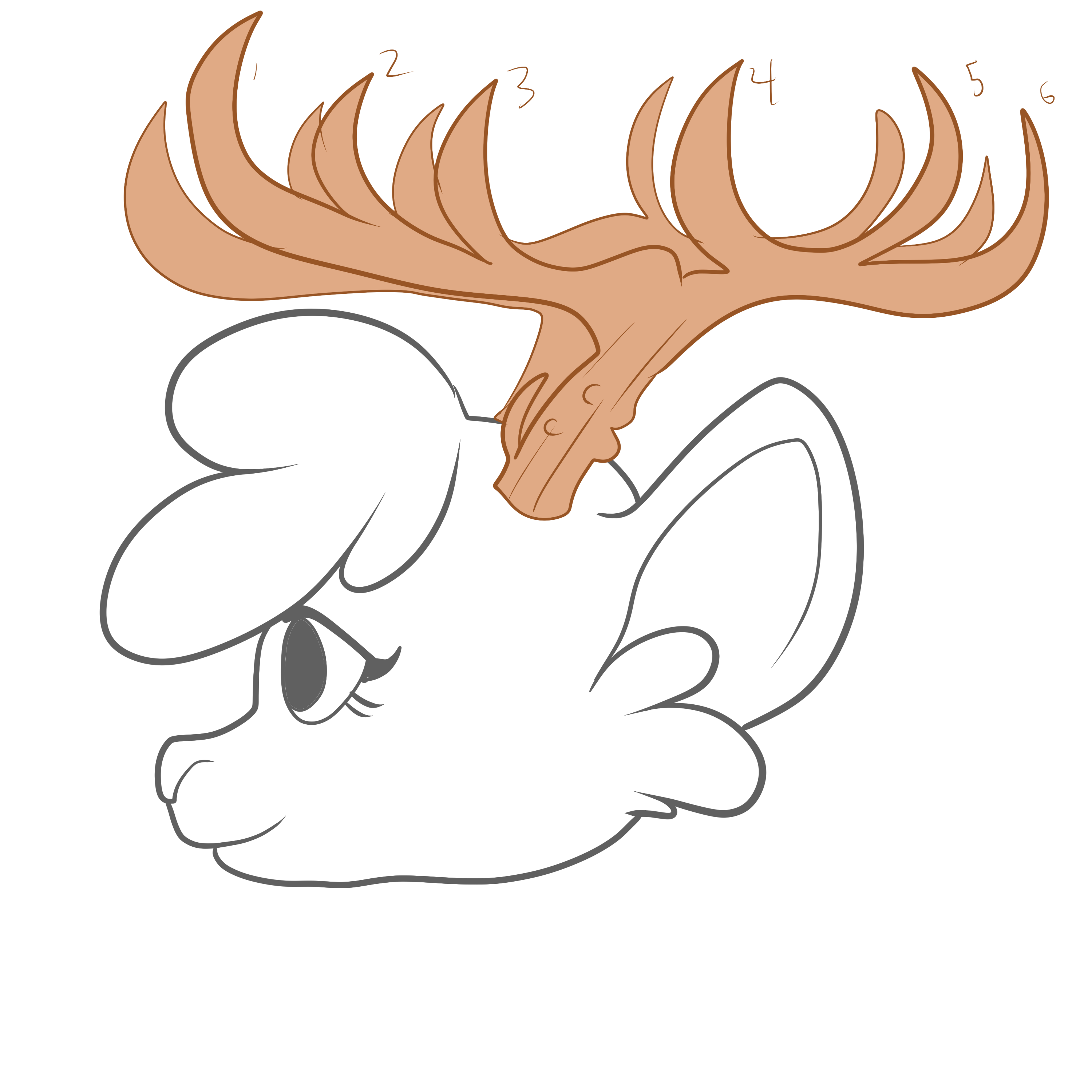 Horns,  Multiple Branches